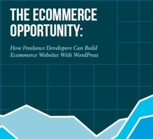 the_ecommerce_opportunity